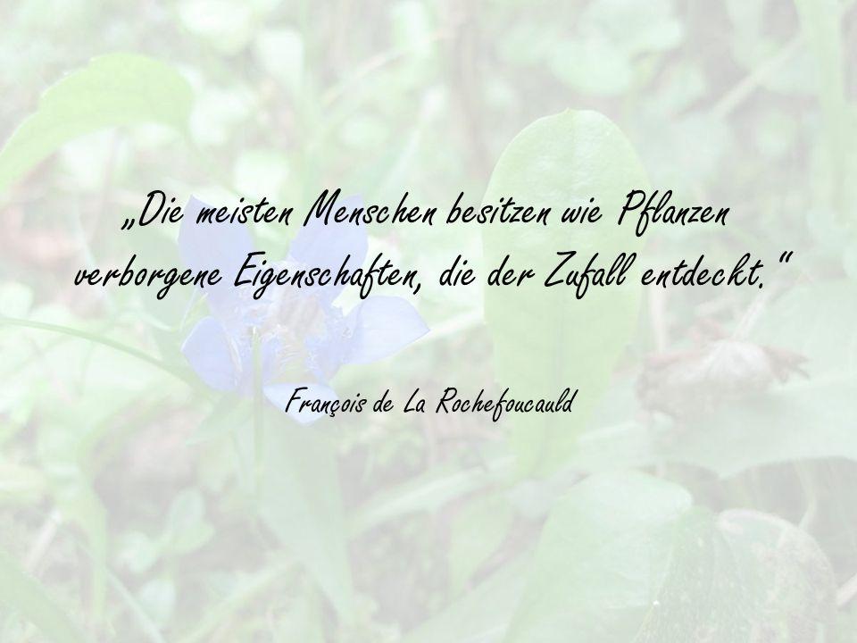 """""""Die meisten Menschen besitzen wie Pflanzen verborgene Eigenschaften, die der Zufall entdeckt. François de La Rochefoucauld"""
