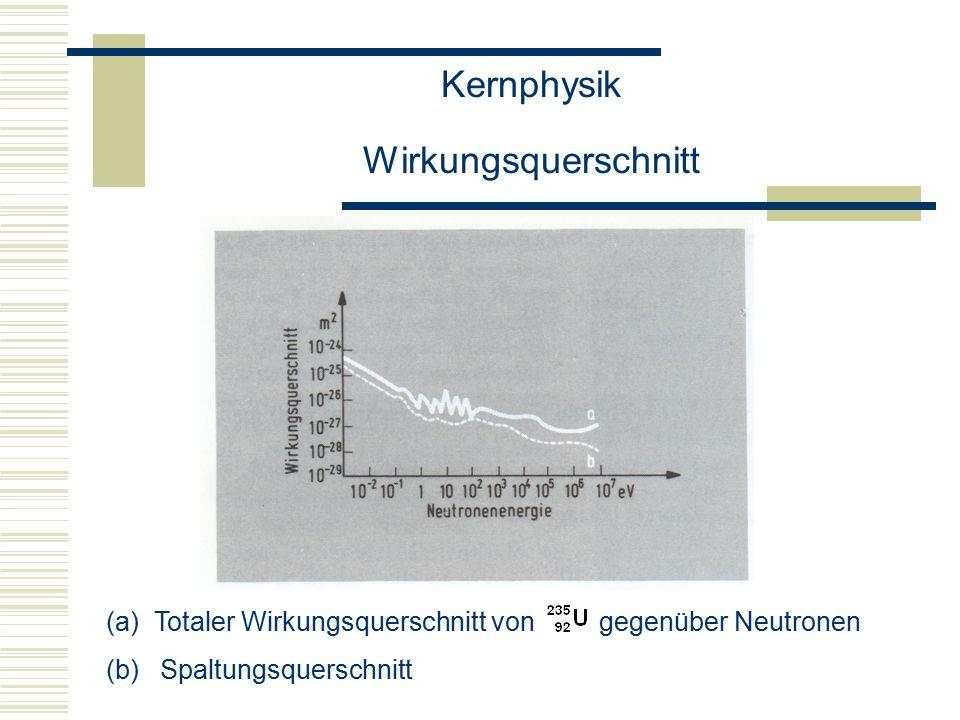 Kernphysik Wirkungsquerschnitt  Die Kerne sind erheblich leichter durch Neutronen spaltbar als die Kerne.