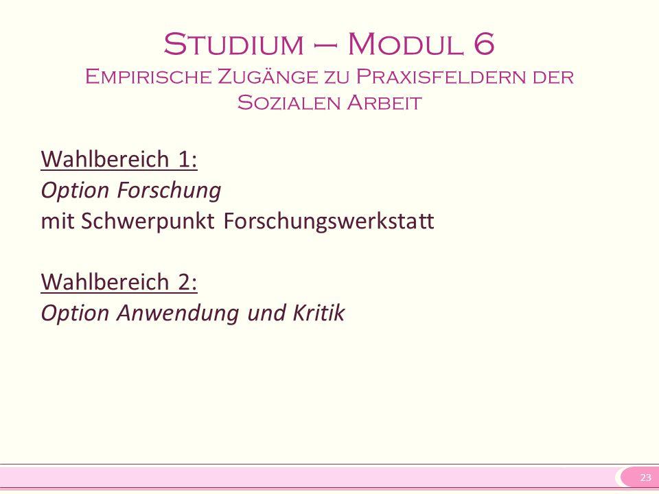 23 Studium – Modul 6 Empirische Zugänge zu Praxisfeldern der Sozialen Arbeit Wahlbereich 1: Option Forschung mit Schwerpunkt Forschungswerkstatt Wahlb