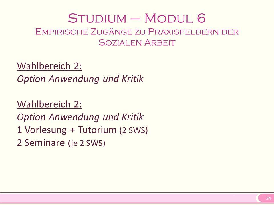 24 Studium – Modul 6 Empirische Zugänge zu Praxisfeldern der Sozialen Arbeit Wahlbereich 2: Option Anwendung und Kritik Wahlbereich 2: Option Anwendun