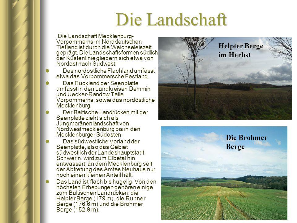 Die Landschaft Die Landschaft Mecklenburg- Vorpommerns im Norddeutschen Tiefland ist durch die Weichseleiszeit geprägt. Die Landschaftsformen südlich