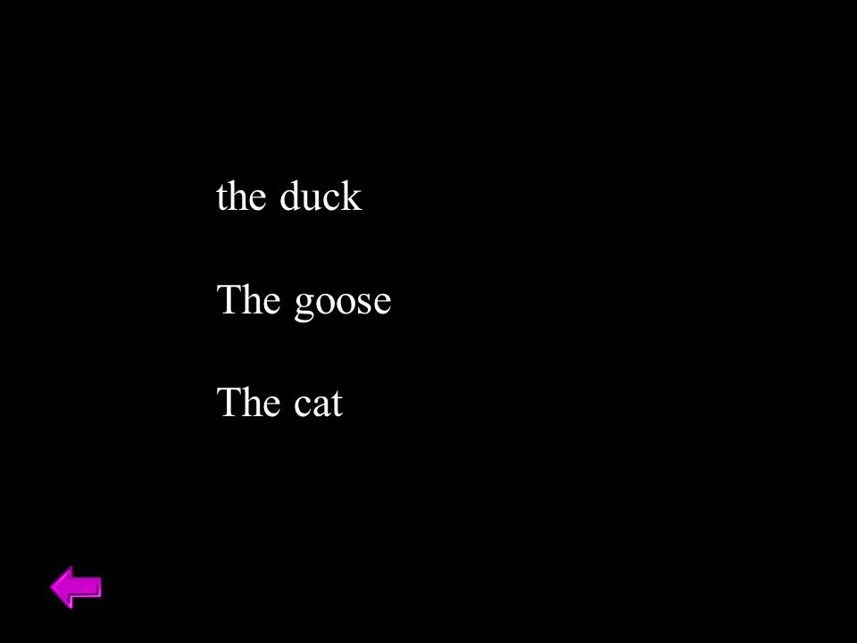 the duck The goose The cat