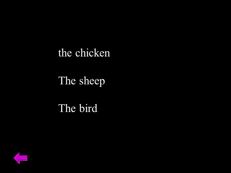 the chicken The sheep The bird