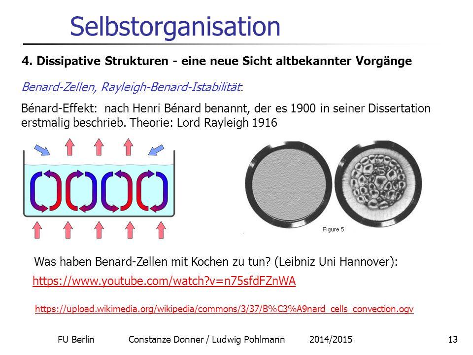 FU Berlin Constanze Donner / Ludwig Pohlmann 2014/201514 Selbstorganisation 5.