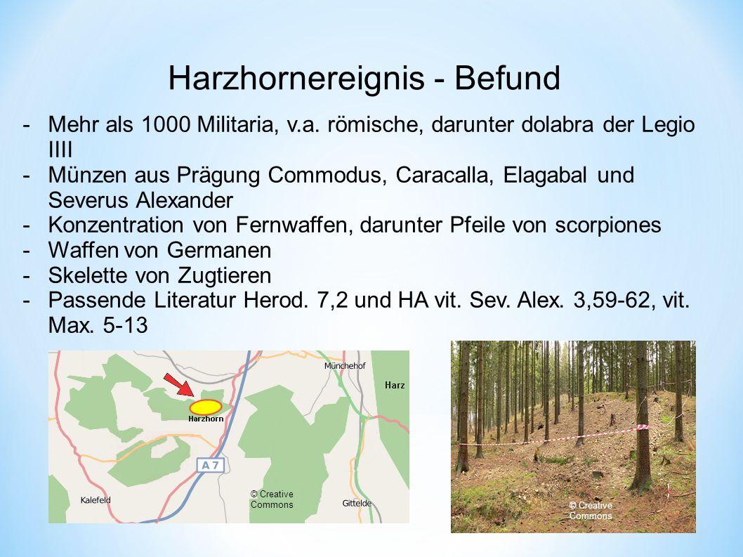 Harzhornereignis - Befund -Mehr als 1000 Militaria, v.a.