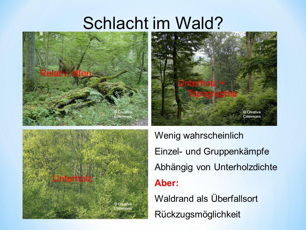 Schlacht im Wald.