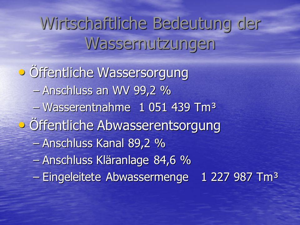 Wirtschaftliche Bedeutung der Wassernutzungen Öffentliche Wassersorgung Öffentliche Wassersorgung –Anschluss an WV 99,2 % –Wasserentnahme 1 051 439 Tm