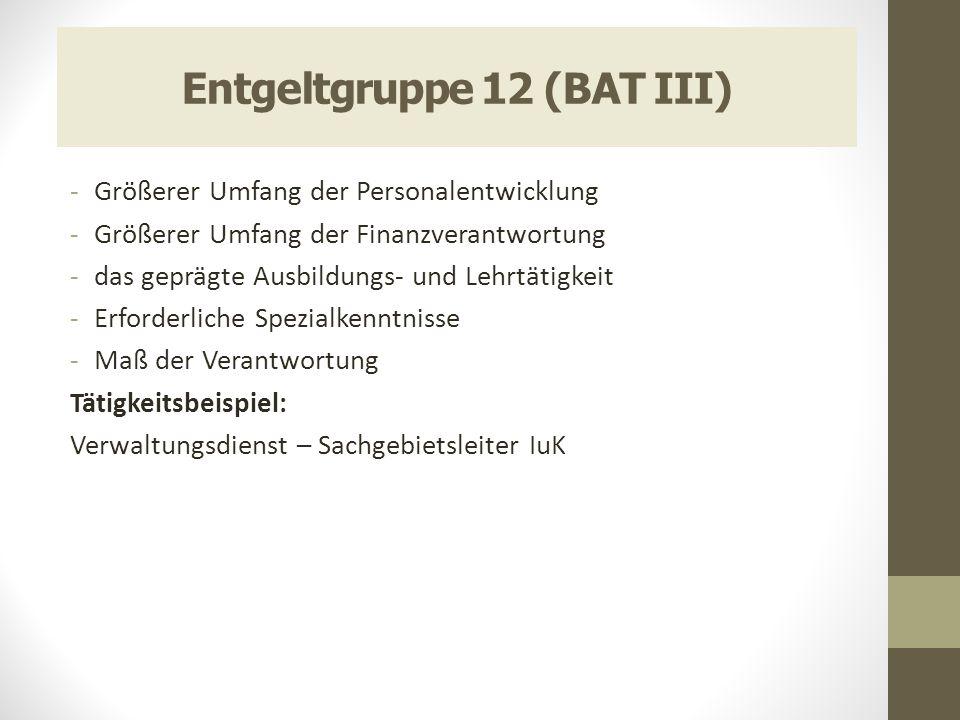 Entgeltgruppe 12 (BAT III) -Größerer Umfang der Personalentwicklung -Größerer Umfang der Finanzverantwortung -das geprägte Ausbildungs- und Lehrtätigk