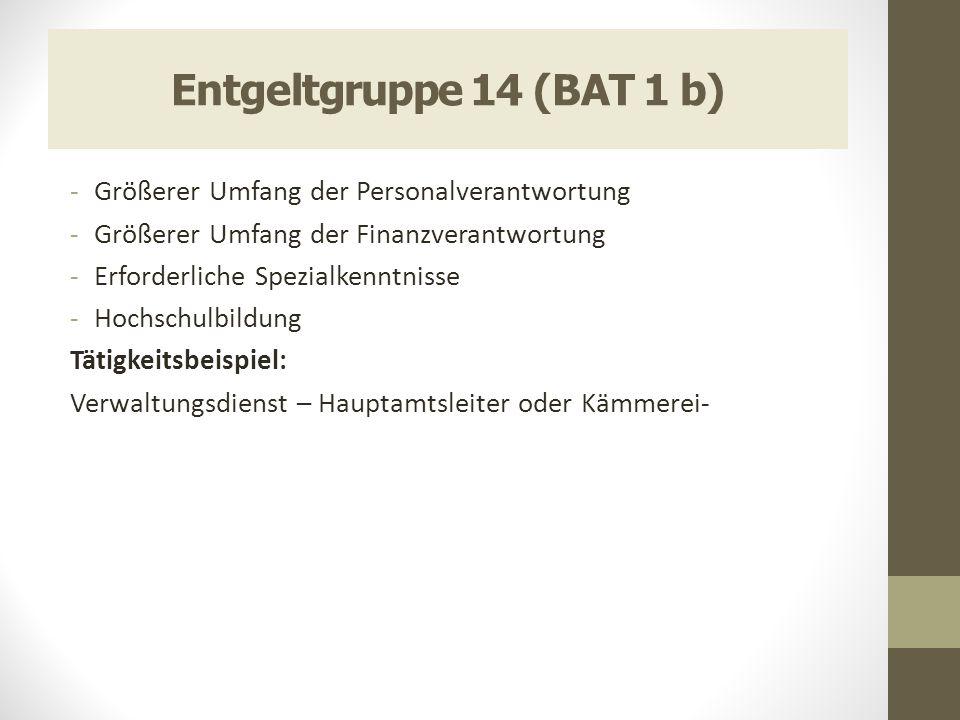Entgeltgruppe 14 (BAT 1 b) -Größerer Umfang der Personalverantwortung -Größerer Umfang der Finanzverantwortung -Erforderliche Spezialkenntnisse -Hochs