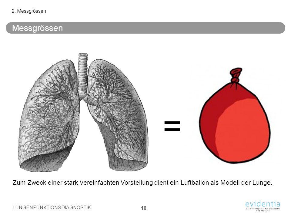 Messgrössen 2. Messgrössen Zum Zweck einer stark vereinfachten Vorstellung dient ein Luftballon als Modell der Lunge. = LUNGENFUNKTIONSDIAGNOSTIK 10