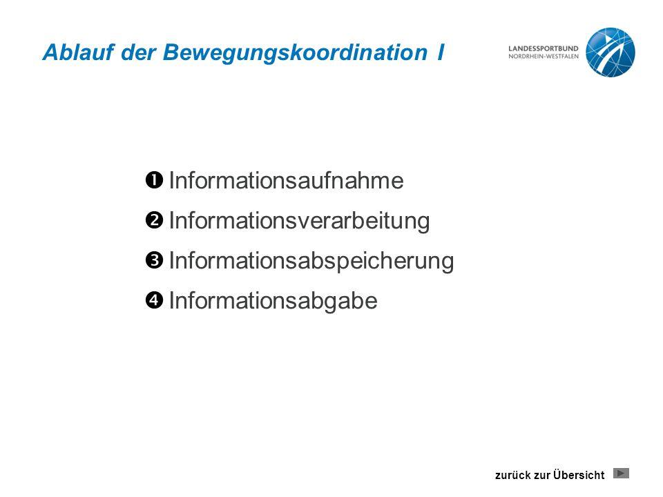 Ablauf der Bewegungskoordination I  Informationsaufnahme  Informationsverarbeitung  Informationsabspeicherung  Informationsabgabe zurück zur Übers