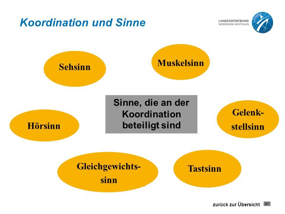 Sinne, die an der Koordination beteiligt sind Sehsinn Muskelsinn Gelenk- stellsinn Tastsinn Gleichgewichts- sinn Hörsinn Koordination und Sinne zurück