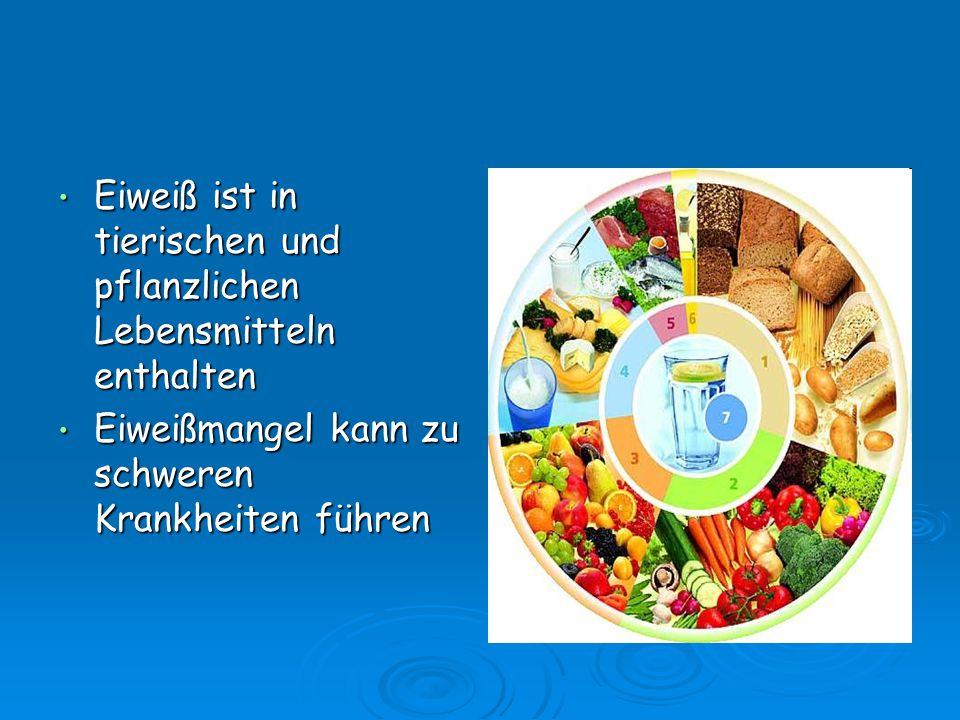 Eiweiß ist in tierischen und pflanzlichen Lebensmitteln enthalten Eiweiß ist in tierischen und pflanzlichen Lebensmitteln enthalten Eiweißmangel kann
