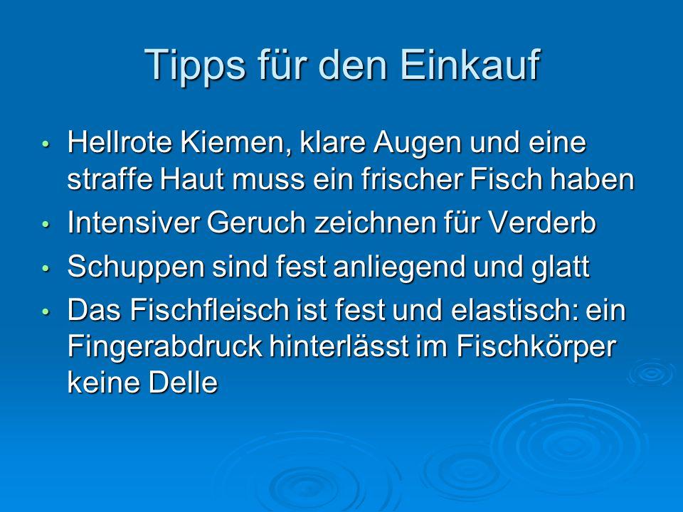 Tipps für den Einkauf Hellrote Kiemen, klare Augen und eine straffe Haut muss ein frischer Fisch haben Hellrote Kiemen, klare Augen und eine straffe H