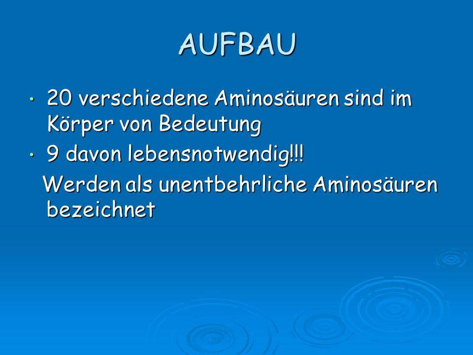 AUFBAU 20 verschiedene Aminosäuren sind im Körper von Bedeutung 20 verschiedene Aminosäuren sind im Körper von Bedeutung 9 davon lebensnotwendig!!! 9