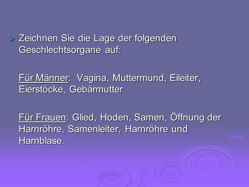  Zeichnen Sie die Lage der folgenden Geschlechtsorgane auf: Für Männer: Vagina, Muttermund, Eileiter, Eierstöcke, Gebärmutter Für Frauen: Glied, Hode