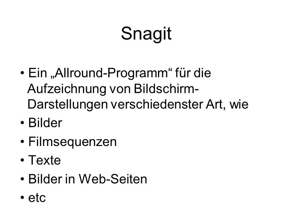 """Snagit Ein """"Allround-Programm"""" für die Aufzeichnung von Bildschirm- Darstellungen verschiedenster Art, wie Bilder Filmsequenzen Texte Bilder in Web-Se"""