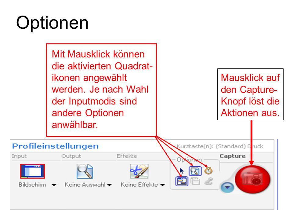 Optionen Mit Mausklick können die aktivierten Quadrat- ikonen angewählt werden. Je nach Wahl der Inputmodis sind andere Optionen anwählbar. Mausklick