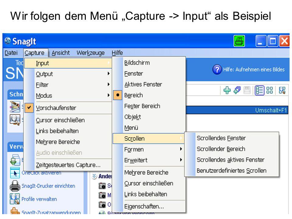 """Wir folgen dem Menü """"Capture -> Input"""" als Beispiel"""