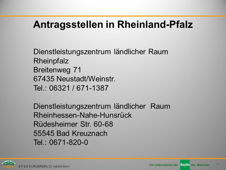 18 Ein Unternehmen der AG, München © F & E EUROGREEN, Dr. Harald Nonn Antragsstellen in Rheinland-Pfalz Dienstleistungszentrum ländlicher Raum Rheinpf