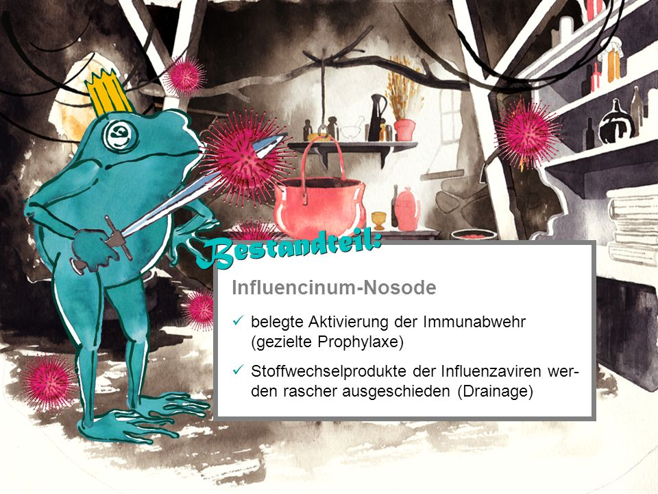 Influencinum-Nosode belegte Aktivierung der Immunabwehr (gezielte Prophylaxe) Stoffwechselprodukte der Influenzaviren wer- den rascher ausgeschieden (Drainage) Bestandteil: