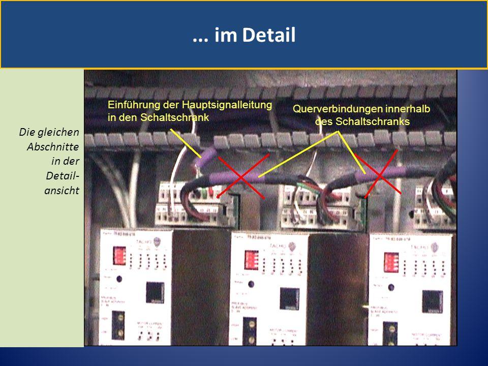 ... im Detail Die gleichen Abschnitte in der Detail- ansicht Einführung der Hauptsignalleitung in den Schaltschrank Querverbindungen innerhalb des Sch