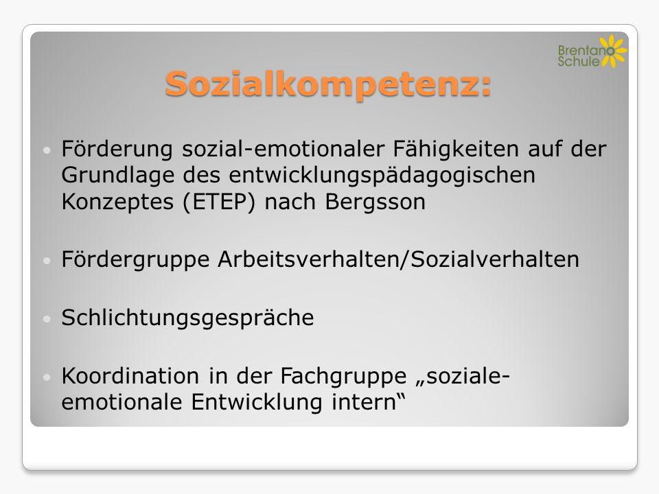Sozialkompetenz: Förderung sozial-emotionaler Fähigkeiten auf der Grundlage des entwicklungspädagogischen Konzeptes (ETEP) nach Bergsson Fördergruppe