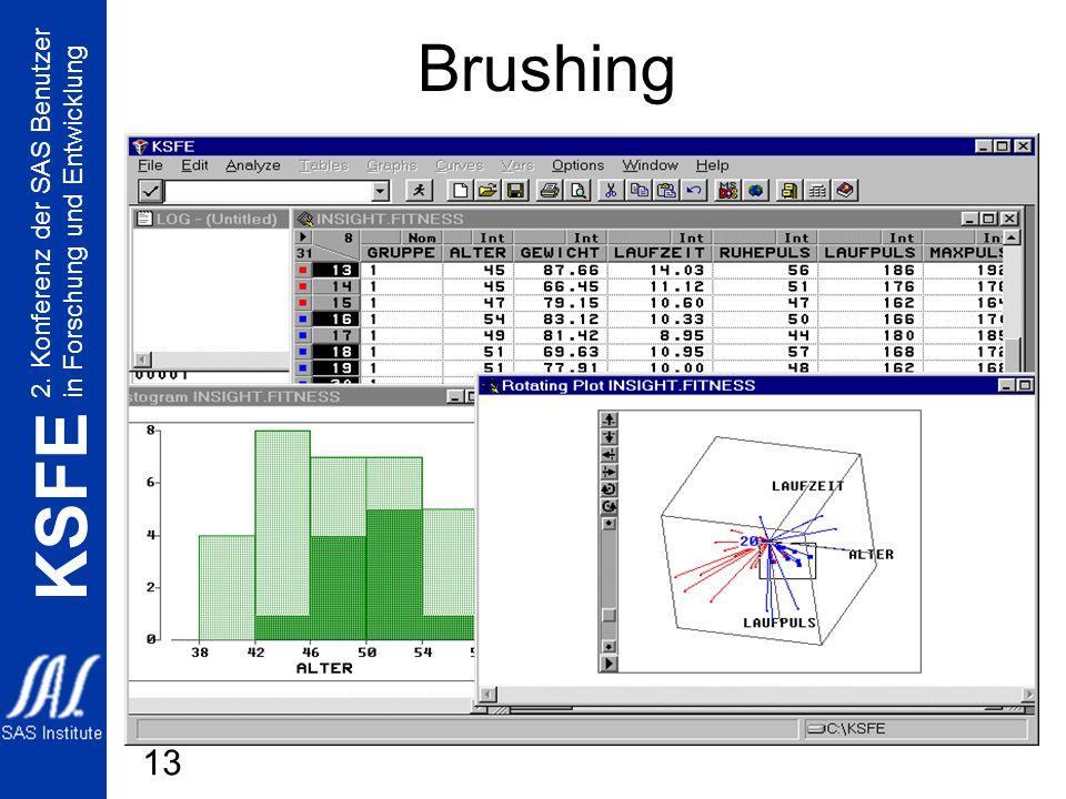 2. Konferenz der SAS Benutzer in Forschung und Entwicklung KSFE 13 Brushing
