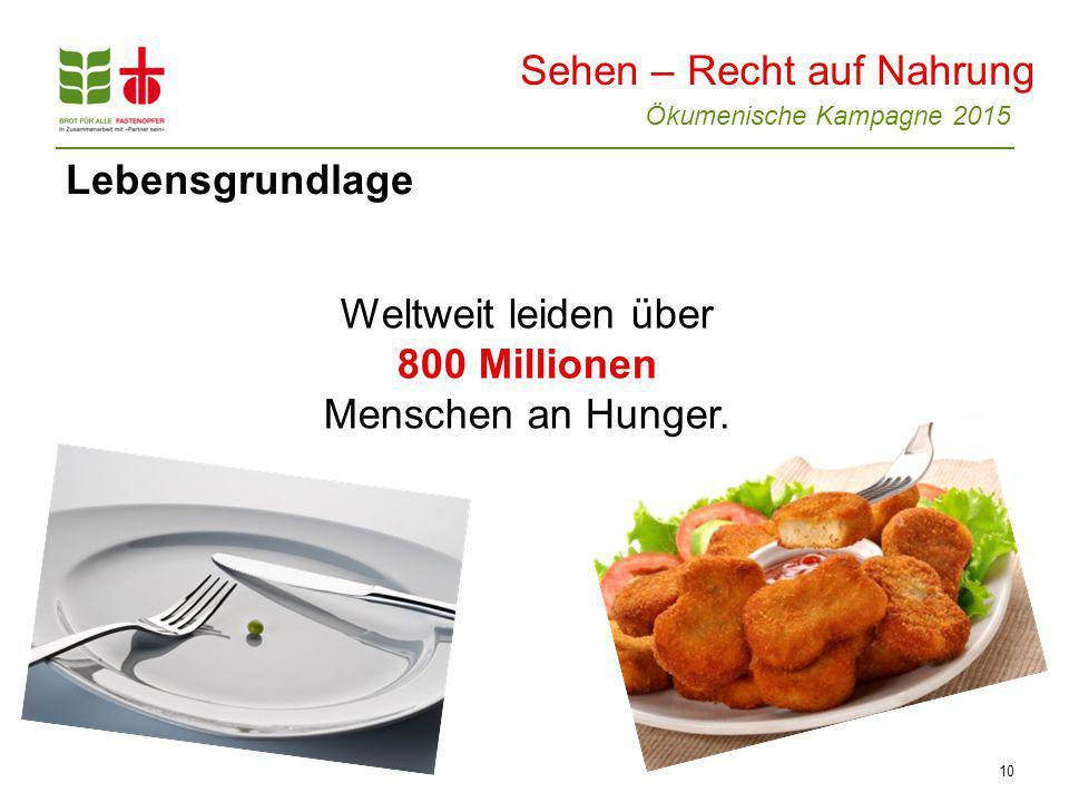 Ökumenische Kampagne 2015 10 Lebensgrundlage Weltweit leiden über 800 Millionen Menschen an Hunger.