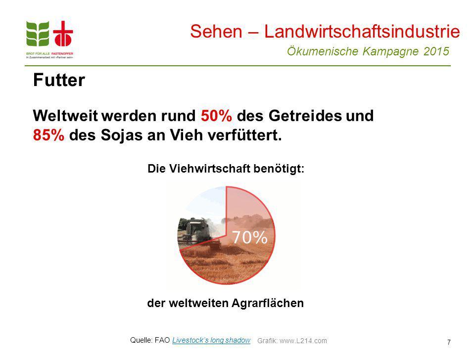 Ökumenische Kampagne 2015 7 Futter Weltweit werden rund 50% des Getreides und 85% des Sojas an Vieh verfüttert.