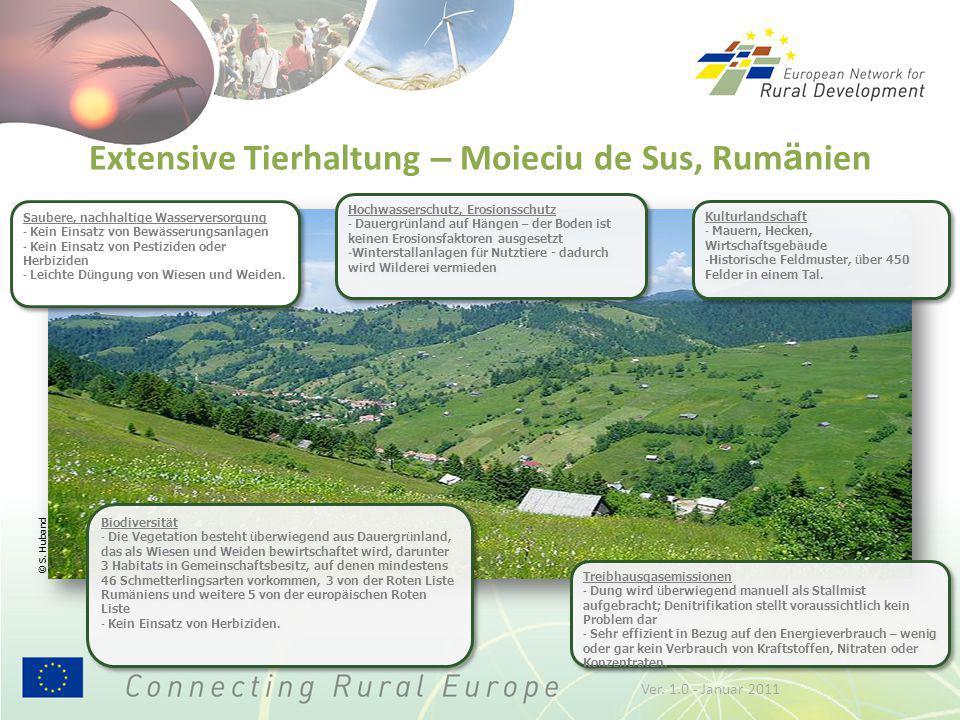 Extensive Tierhaltung – Moieciu de Sus, Rum ä nien Biodiversit ä t - Die Vegetation besteht ü berwiegend aus Dauergr ü nland, das als Wiesen und Weide