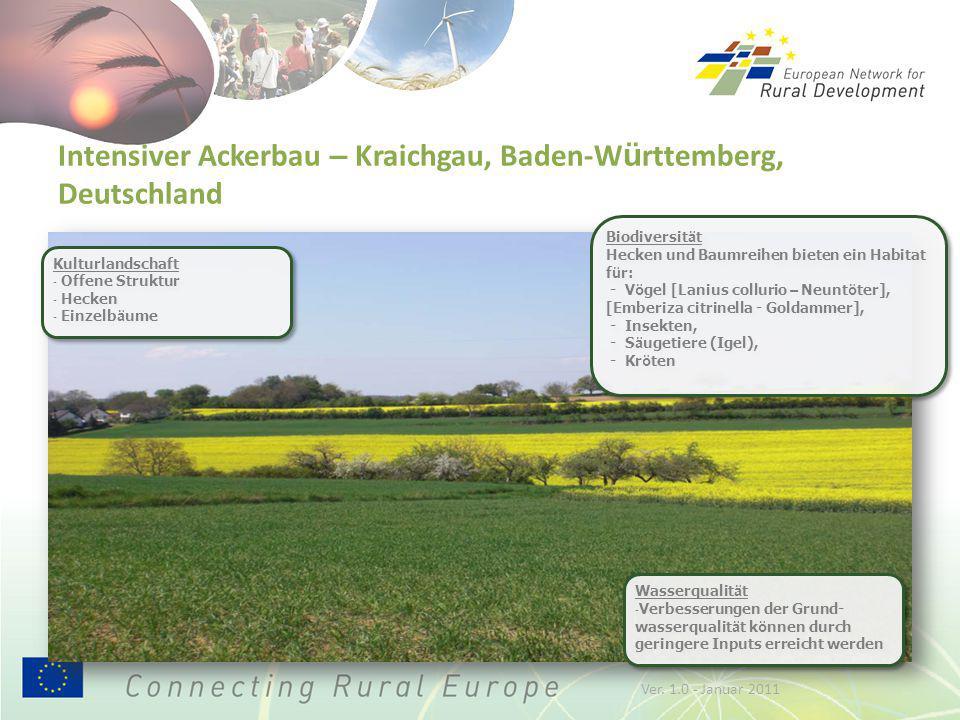 Intensiver Ackerbau – Kraichgau, Baden-W ü rttemberg, Deutschland Biodiversit ä t Hecken und Baumreihen bieten ein Habitat f ü r: - V ö gel [Lanius collurio – Neunt ö ter], [Emberiza citrinella - Goldammer], - Insekten, - S ä ugetiere (Igel), - Kr ö ten Biodiversit ä t Hecken und Baumreihen bieten ein Habitat f ü r: - V ö gel [Lanius collurio – Neunt ö ter], [Emberiza citrinella - Goldammer], - Insekten, - S ä ugetiere (Igel), - Kr ö ten Wasserqualit ä t - Verbesserungen der Grund- wasserqualit ä t k ö nnen durch geringere Inputs erreicht werden Wasserqualit ä t - Verbesserungen der Grund- wasserqualit ä t k ö nnen durch geringere Inputs erreicht werden Kulturlandschaft - Offene Struktur - Hecken - Einzelb ä ume Kulturlandschaft - Offene Struktur - Hecken - Einzelb ä ume Ver.