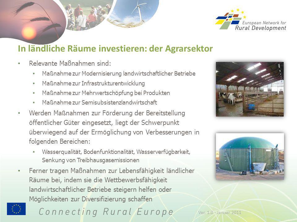 In ländliche Räume investieren: der Agrarsektor Relevante Maßnahmen sind: Ma ß nahme zur Modernisierung landwirtschaftlicher Betriebe Ma ß nahme zur I