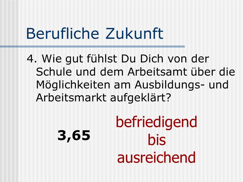 Berufliche Zukunft 4.