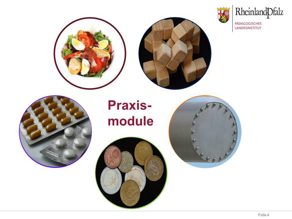 Folie 4 Praxis- module