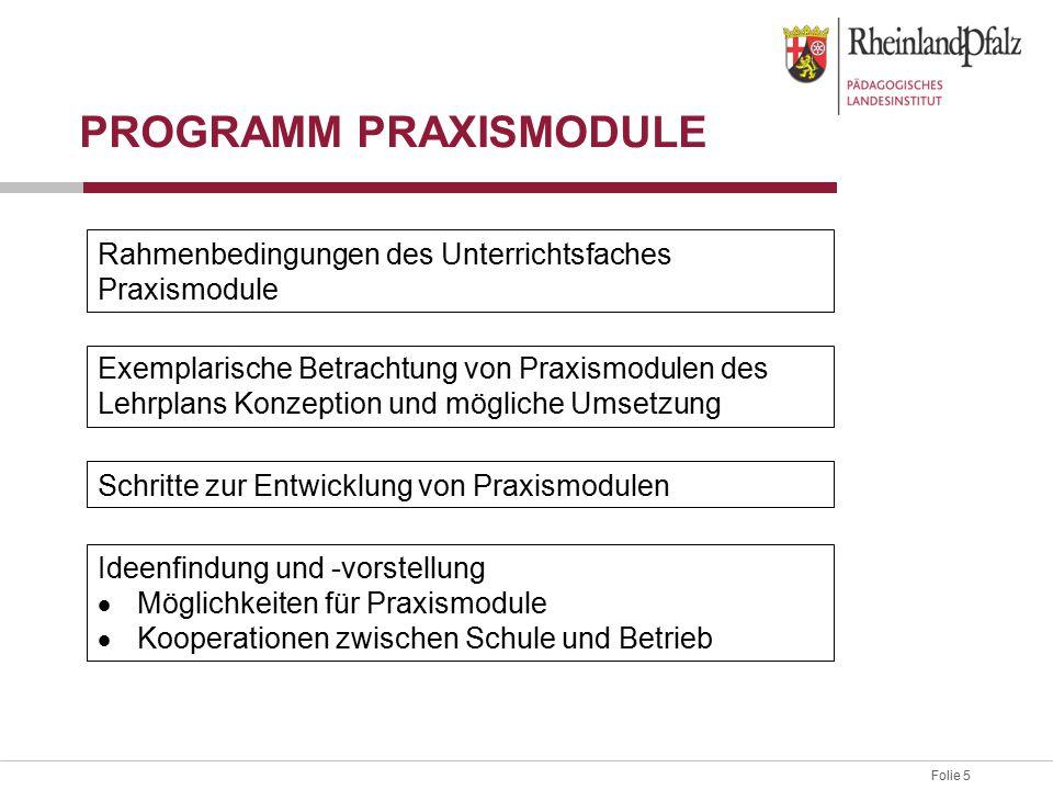 Folie 5 PROGRAMM PRAXISMODULE Rahmenbedingungen des Unterrichtsfaches Praxismodule Exemplarische Betrachtung von Praxismodulen des Lehrplans Konzeptio
