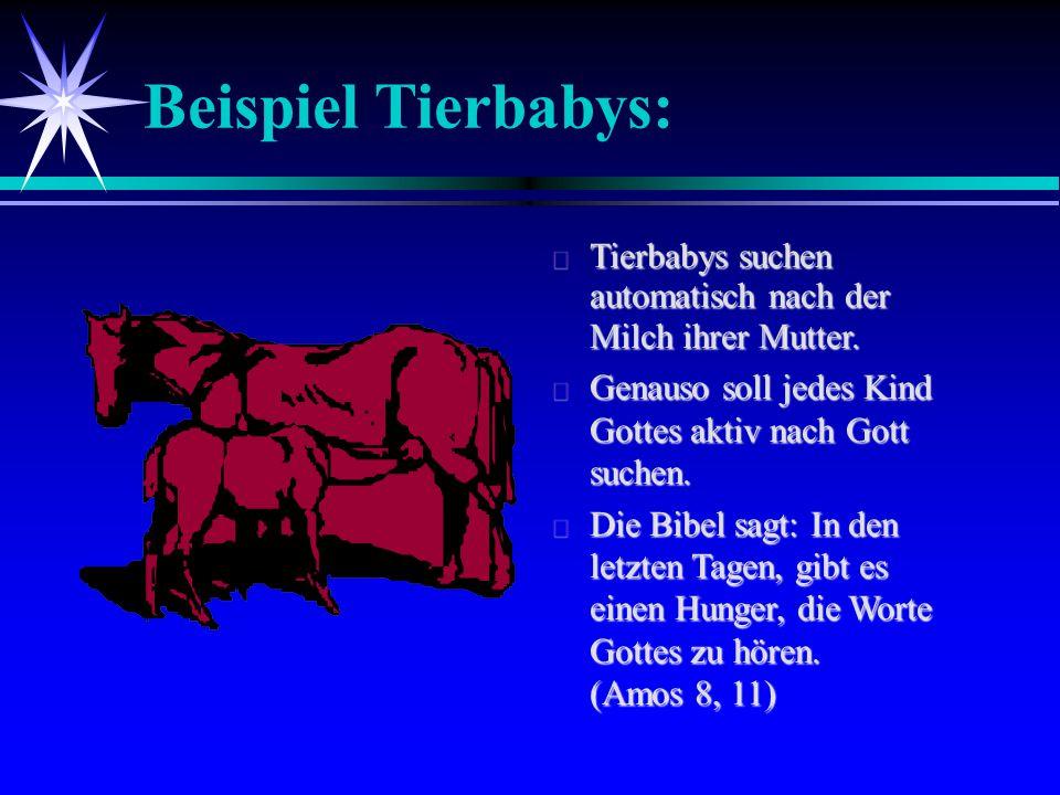 Beispiel Tierbabys:  Tierbabys suchen automatisch nach der Milch ihrer Mutter.  Genauso soll jedes Kind Gottes aktiv nach Gott suchen.  Die Bibel s