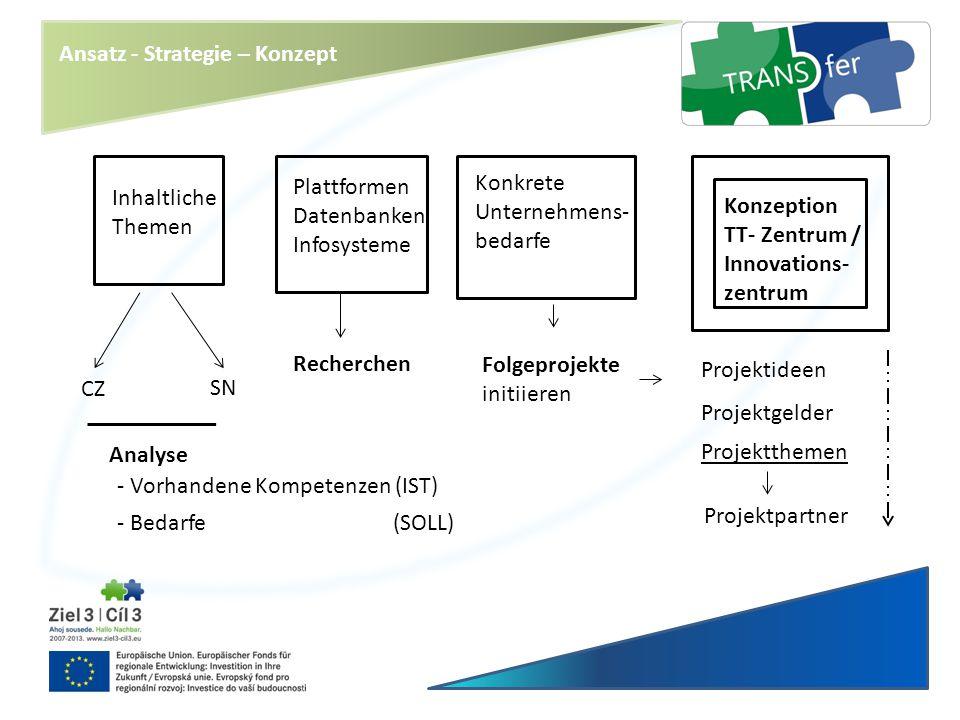 Inhaltliche Themen CZ SN Recherchen Plattformen Datenbanken Infosysteme Konkrete Unternehmens- bedarfe Folgeprojekte initiieren Konzeption TT- Zentrum