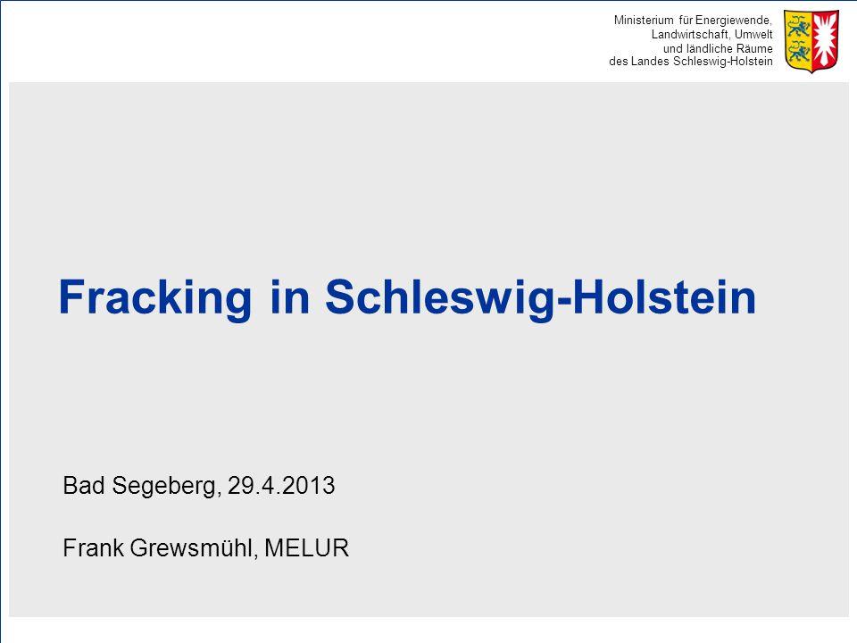 Ministerium für Energiewende, Landwirtschaft, Umwelt und ländliche Räume des Landes Schleswig-Holstein Fracking in Schleswig-Holstein Bad Segeberg, 29