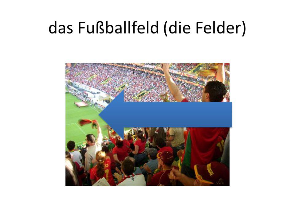 das Fußballfeld (die Felder)