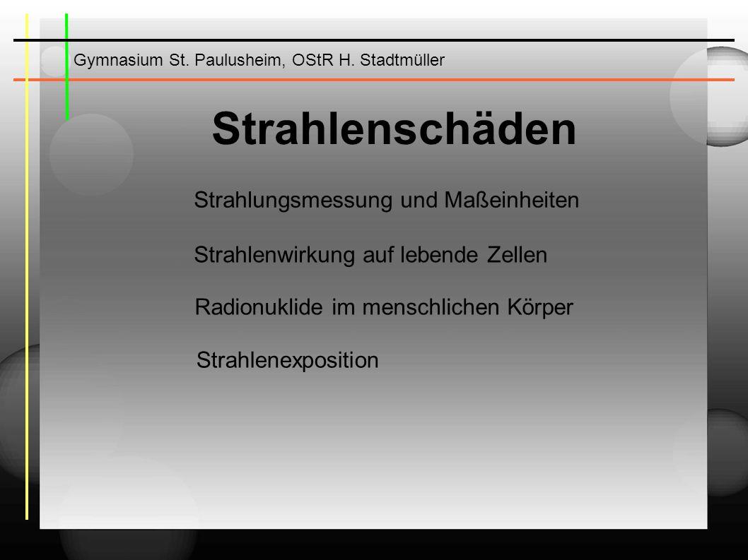 Gymnasium St.Paulusheim, OStR H.