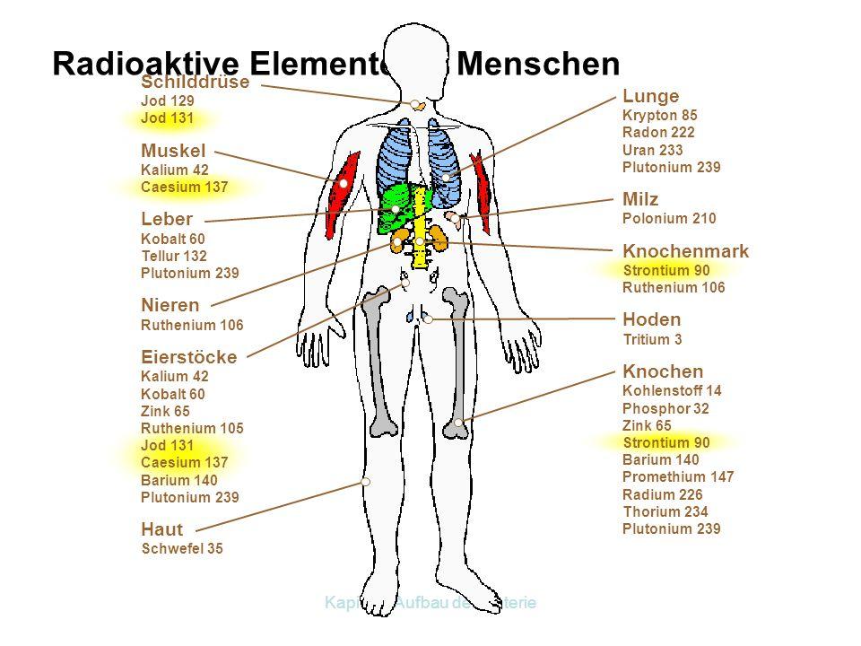 Kapitel 2 Aufbau der Materie Grundwasser Boden- strahlung Nahrungsmittel Künstliche Strahlung Kosmische Strahlung Atmung