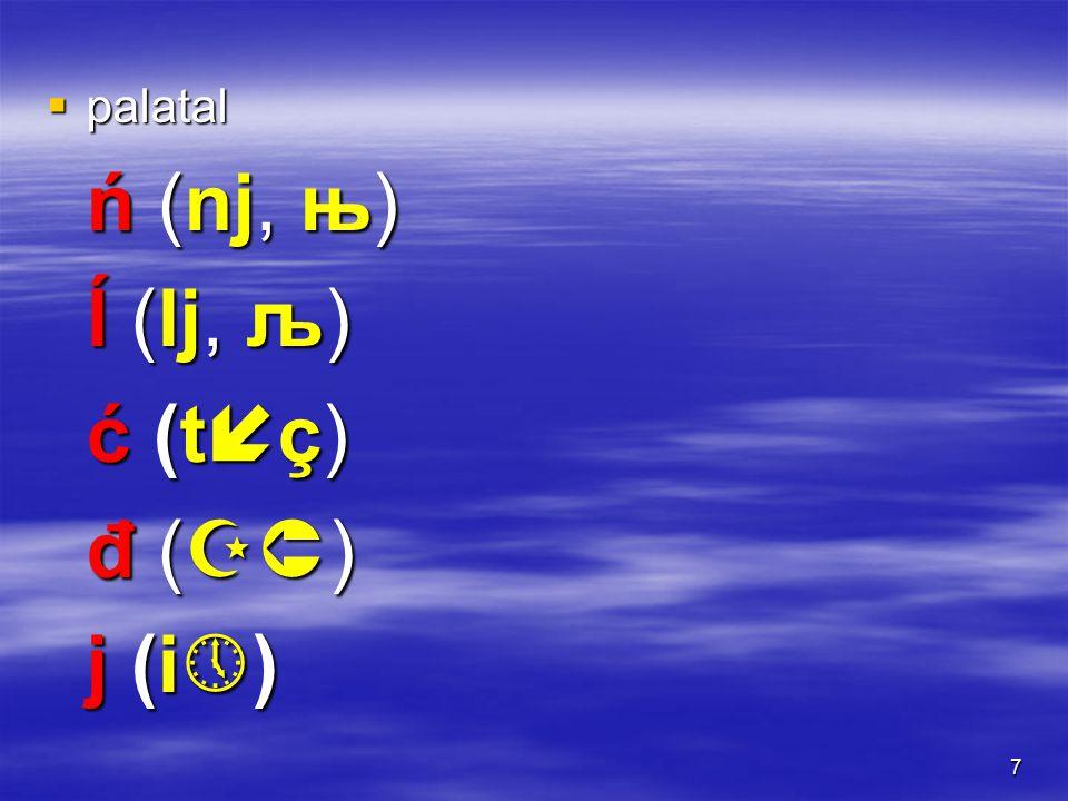 7  palatal ń (nj, њ) ĺ (lj, љ) ć (tç)ć (tç)ć (tç)ć (tç) đ (  ) j (i  )