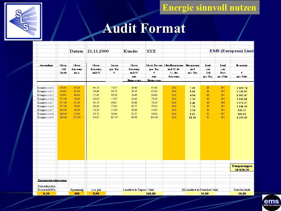 Audit Format Energie sinnvoll nutzenES