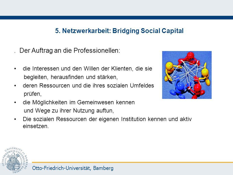 Otto-Friedrich-Universität, Bamberg 5. Netzwerkarbeit: Bridging Social Capital. Der Auftrag an die Professionellen: die Interessen und den Willen der