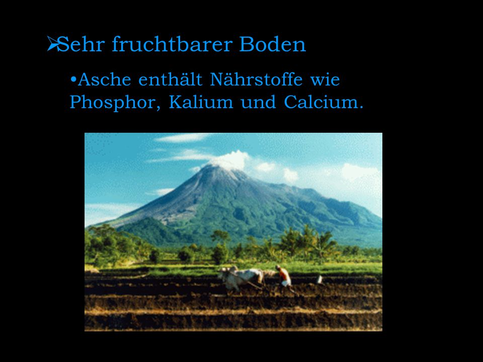  Sehr fruchtbarer Boden Asche enthält Nährstoffe wie Phosphor, Kalium und Calcium.