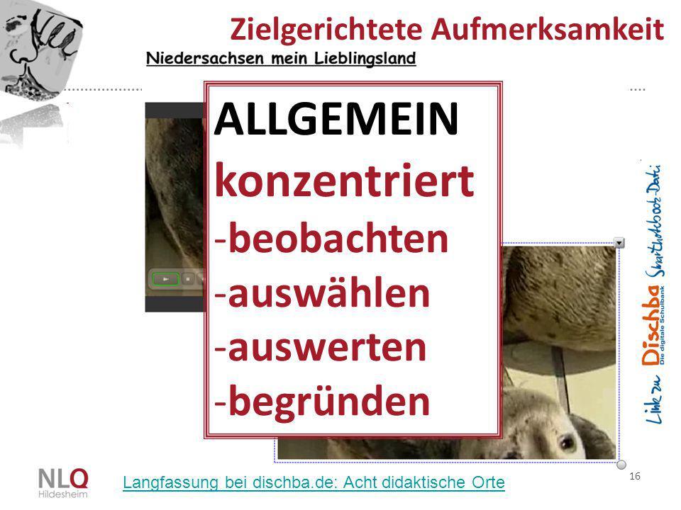 16 Zielgerichtete Aufmerksamkeit ALLGEMEIN konzentriert -beobachten -auswählen -auswerten -begründen Langfassung bei dischba.de: Acht didaktische Orte