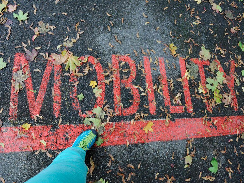 MIWO – Mobilitätsmanagement in Wohnsiedlungen Dezember 2014 10