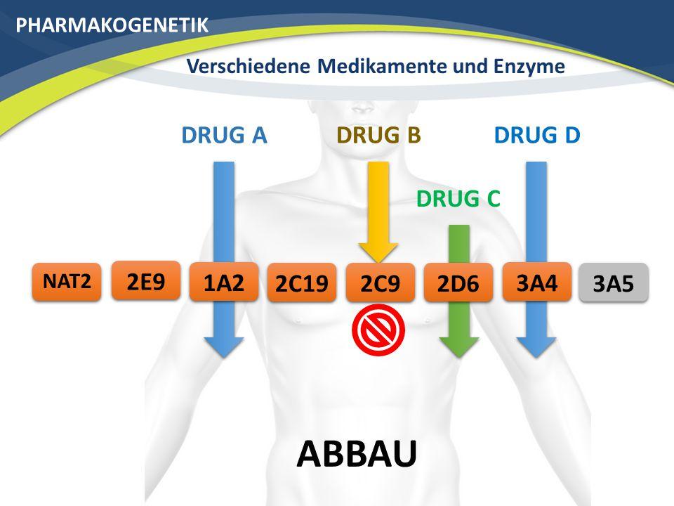 PHARMAKOGENETIK Verschiedene Medikamente und Enzyme DRUG D ABBAU 3A42C192E9 3A5 NAT2 DRUG C 2D6 DRUG B 2C9 DRUG A 1A2