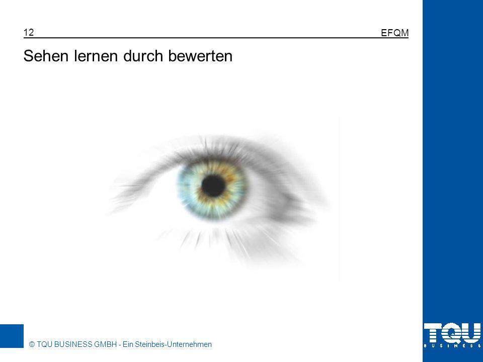© TQU BUSINESS GMBH - Ein Steinbeis-Unternehmen EFQM 12 Sehen lernen durch bewerten